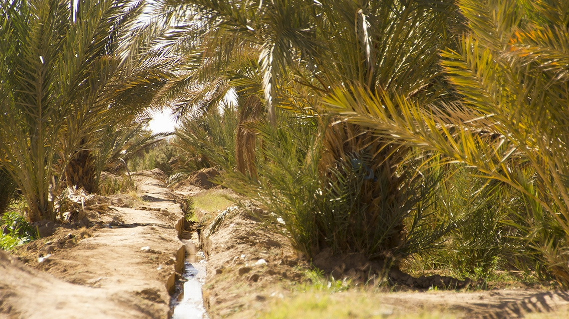 UAE Groundwater Levels Falling by .5cm Per Year, According to New Masdar Institute Research