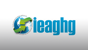 The IEA Greenhouse Gas R&D Program (IEAGHG)