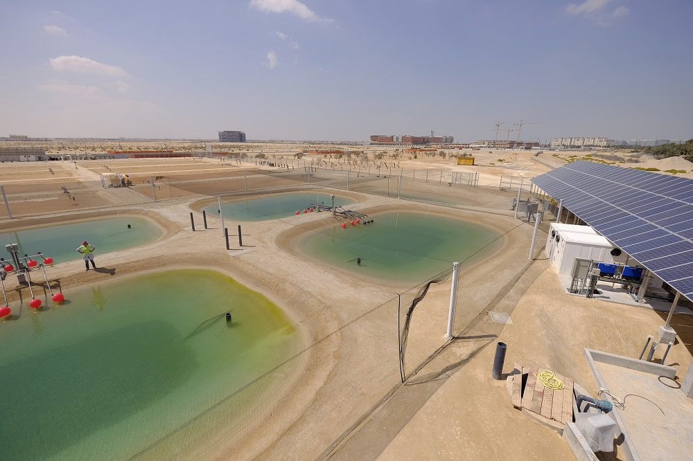 Khalifa University's Seawater Energy and Agriculture System (SEAS) Recognized by Global Water Awards