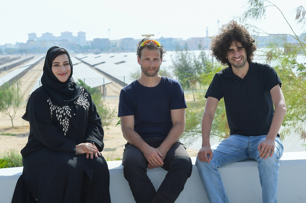 What is Going on With Middle Eastern Solar Prices and What Does It Mean for the Rest of Us?