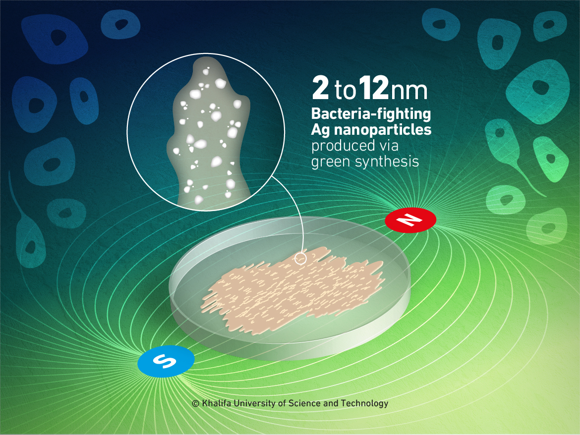 Khalifa University Researchers Develop a New Environmentally-Friendly Way to Produce Nanoparticles that Fight Bacteria